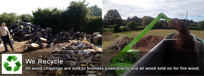 We Recycle - All wood chippings are sold to biomass power plants and all wood sold on for firewood.