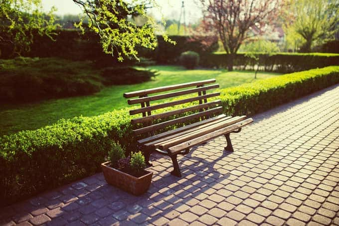 Bench and hedge