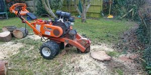 Two Methods of Removing Tree Stumps