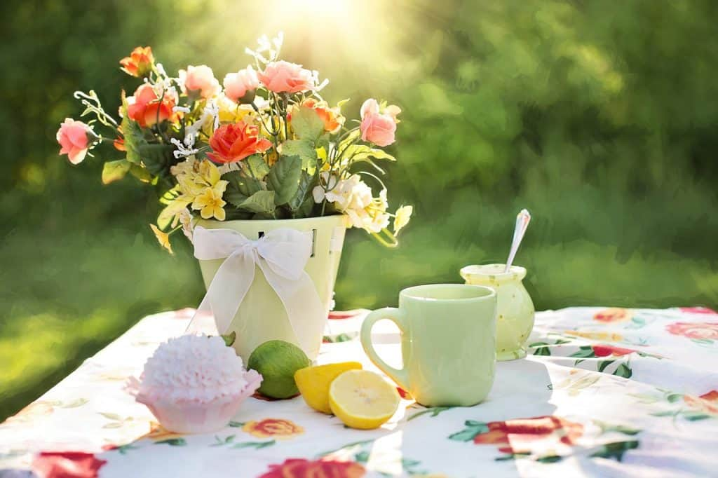 Sunlight on a summer table.