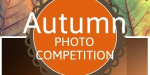 Autumn Photo Competition