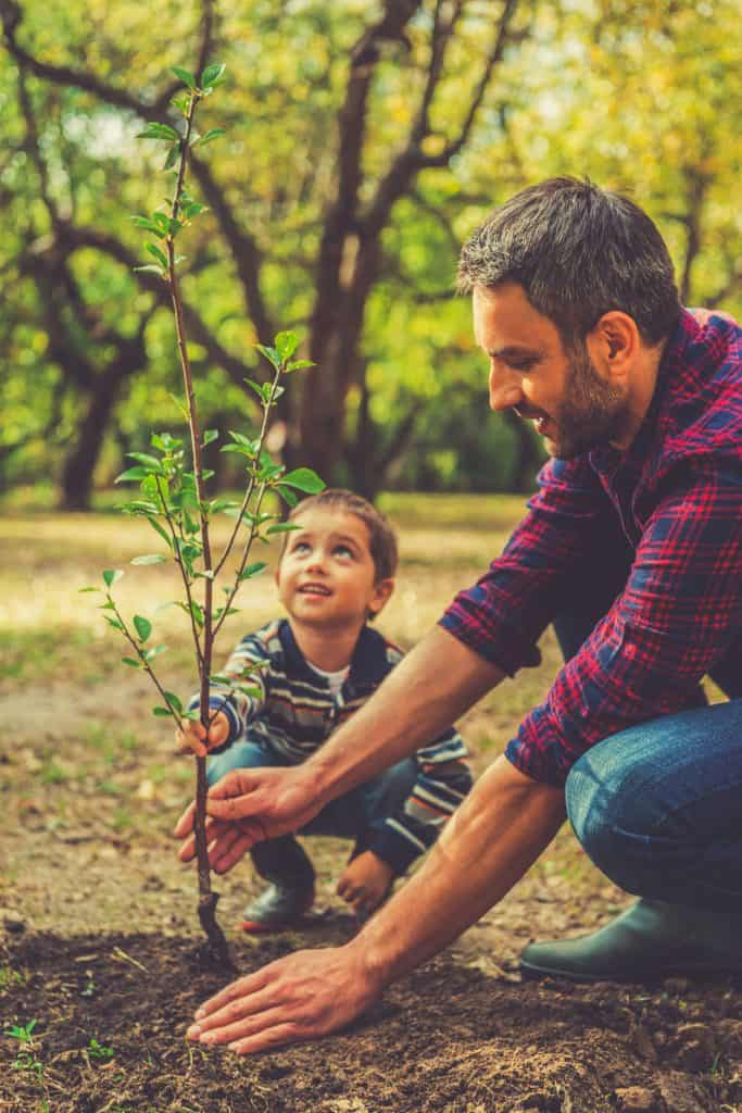 Father and son planting a small tree