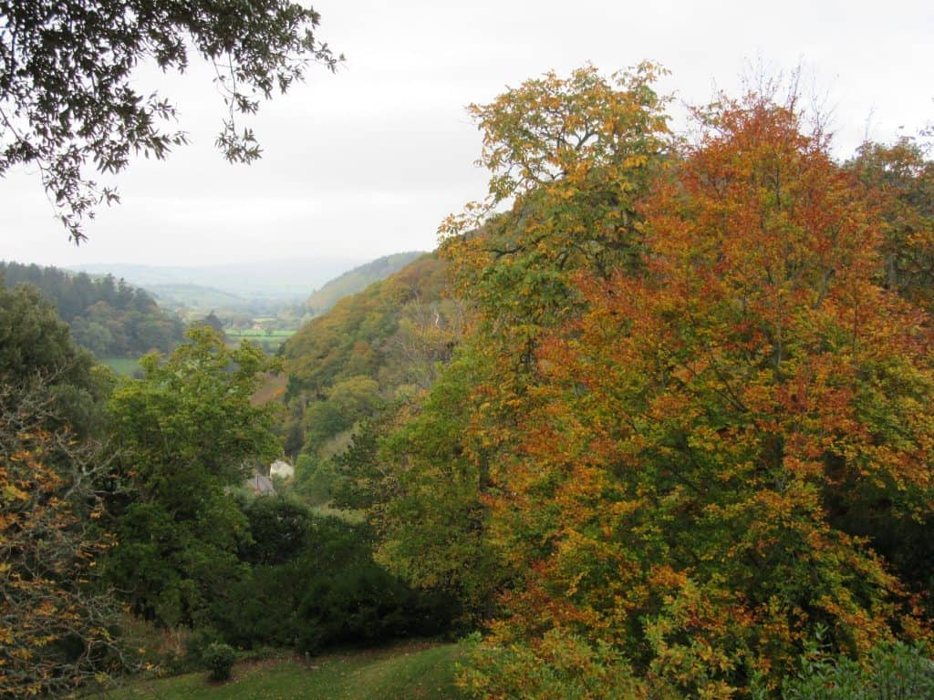 Autumn Colours Over Dunster Castle by @mouseandgarden