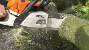 Abingdon tree surgeons chainsaw