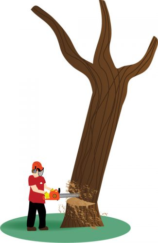 An illustration showing tree felling