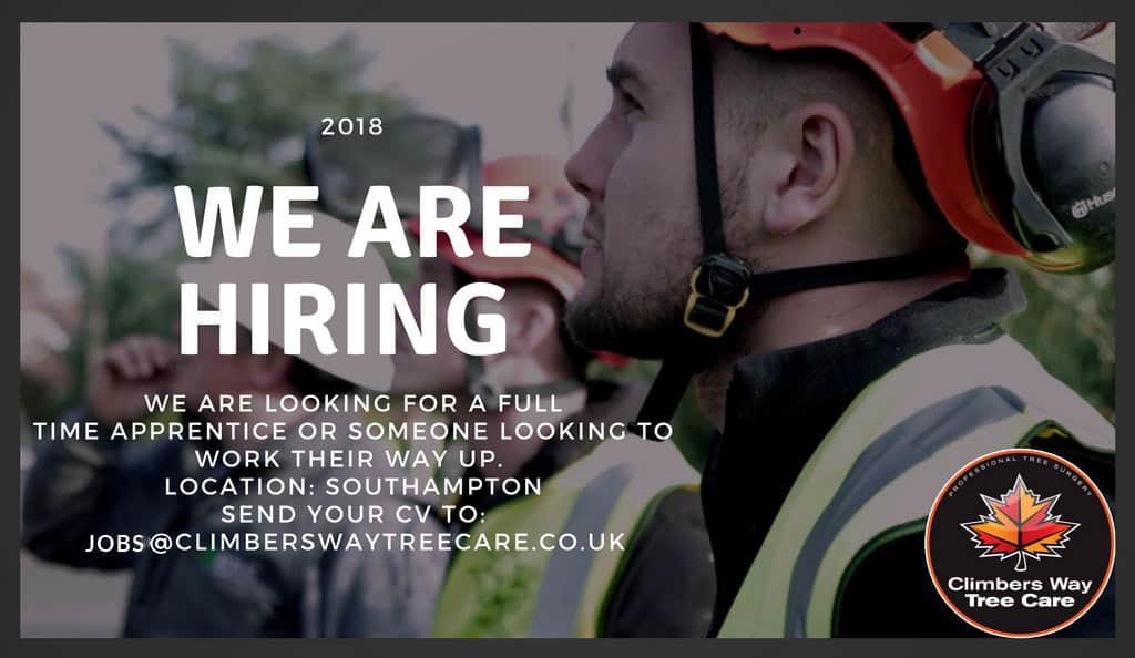 Full Time Apprentice Job Advert