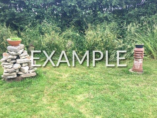 Photo Example 10: Planting