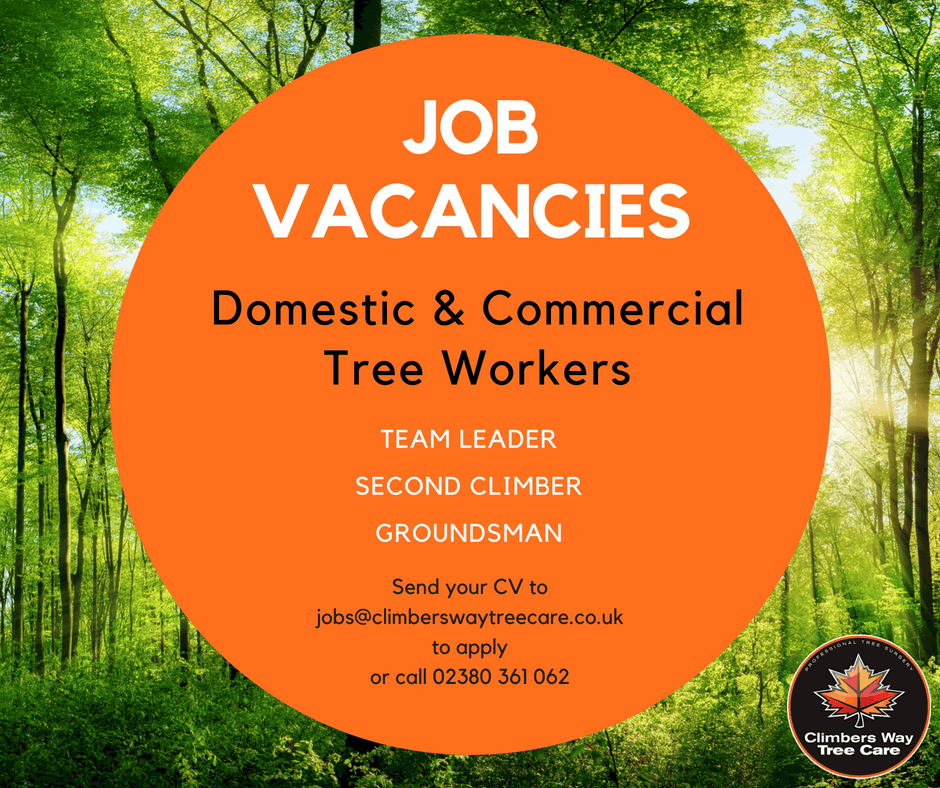Domestic & Commercial Tree Workers Job Advert