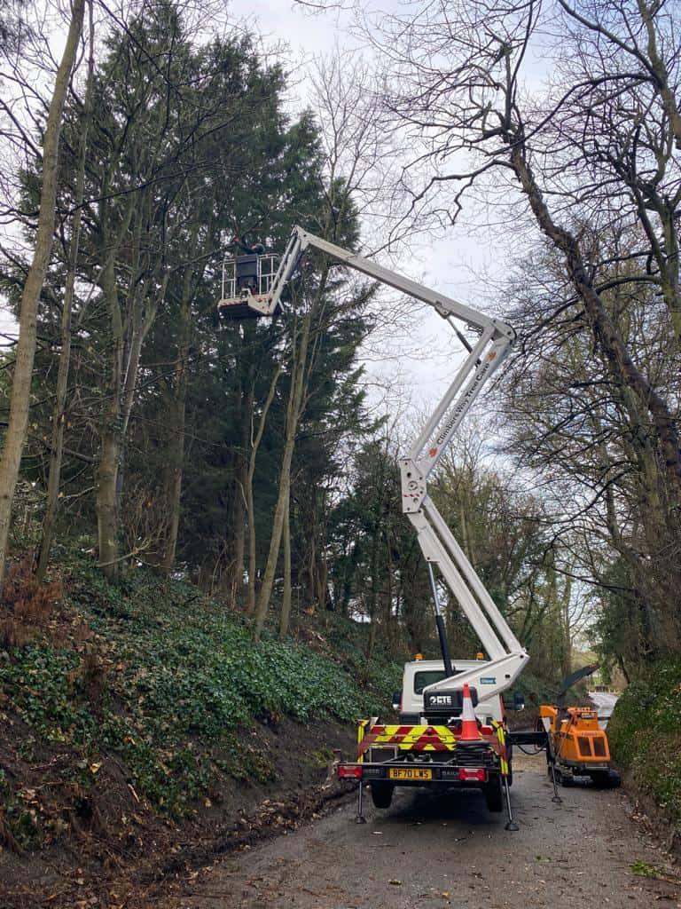 Tree Surgeon MEWP used by Oxford Tree Surgeons to increase efficiency