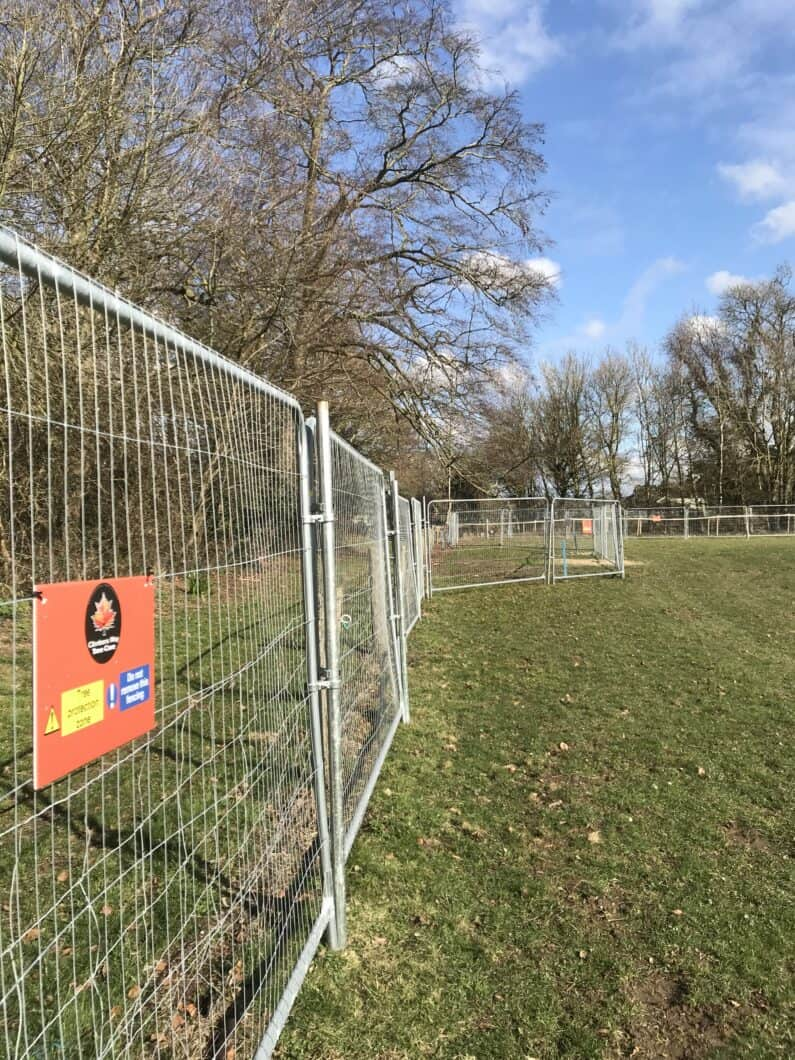 Tree Protection Fencing by Climbers Way Tree Care
