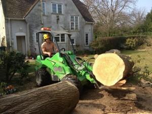 Climbersway Tree Care Tidying Site